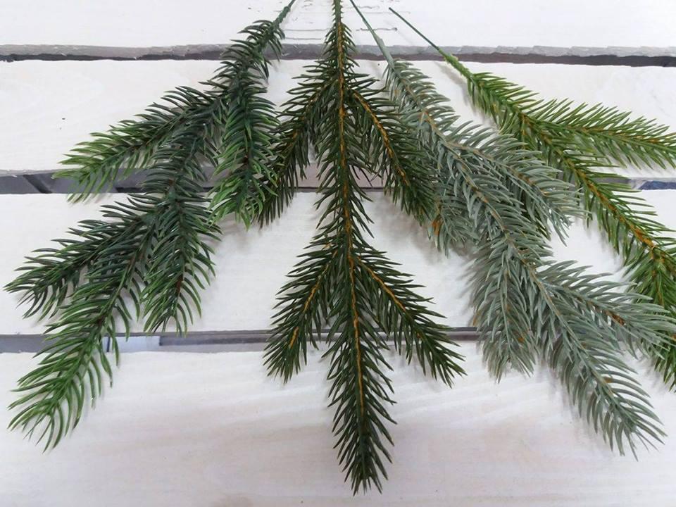 Hustota a rozdelenie 3D stromčekov.